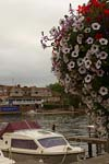 Photograph   from Henley on Thames in England